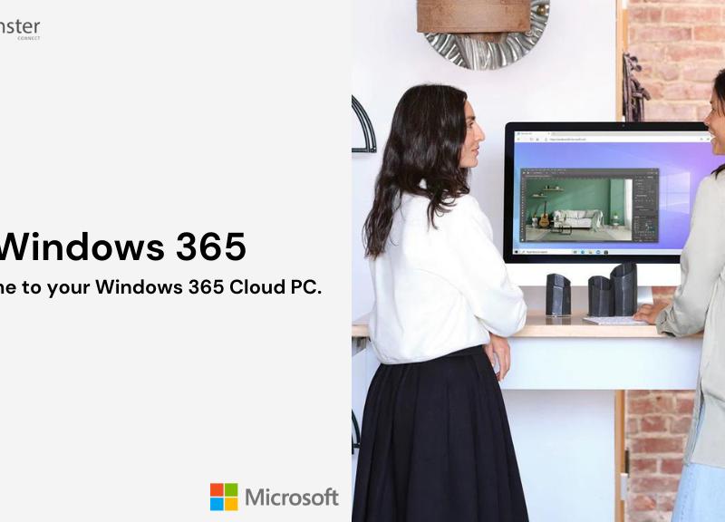 Windows 365 Business vs Enterprise